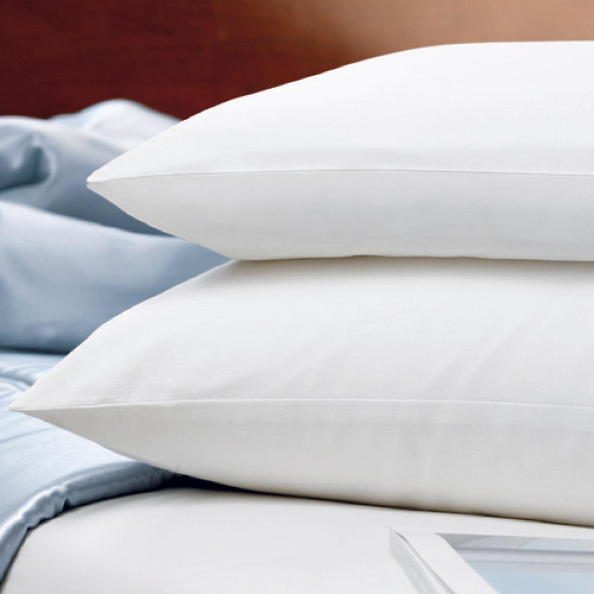 100% Silk Pillows
