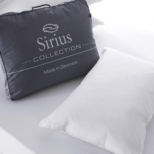 Sirius Pillow